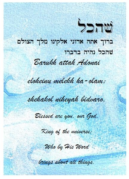 shehakhol-blue-5×7