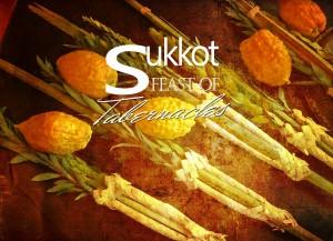 sukkot-article
