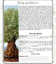 BBM-2-page-sample3