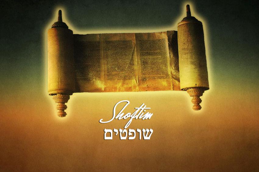 Torah portion reading this week Shoftim Deuteronomy 16:18-21:9