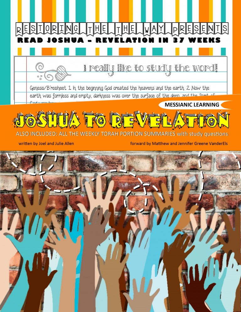 JOSHUA TO REVELATION